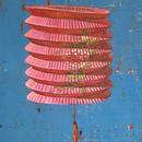 "Painted Lantern, 22.25"" x 24"", detail by Mary Lottridge"